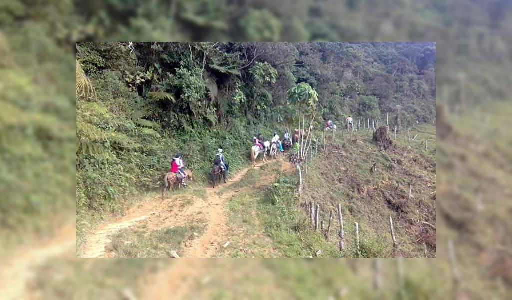 Grupos armados generan desplazamiento en Ituango