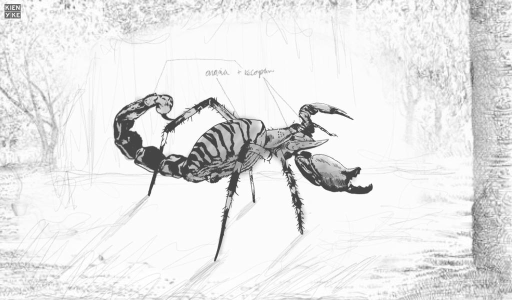Descubren insecto mitad araña y mitad escorpión
