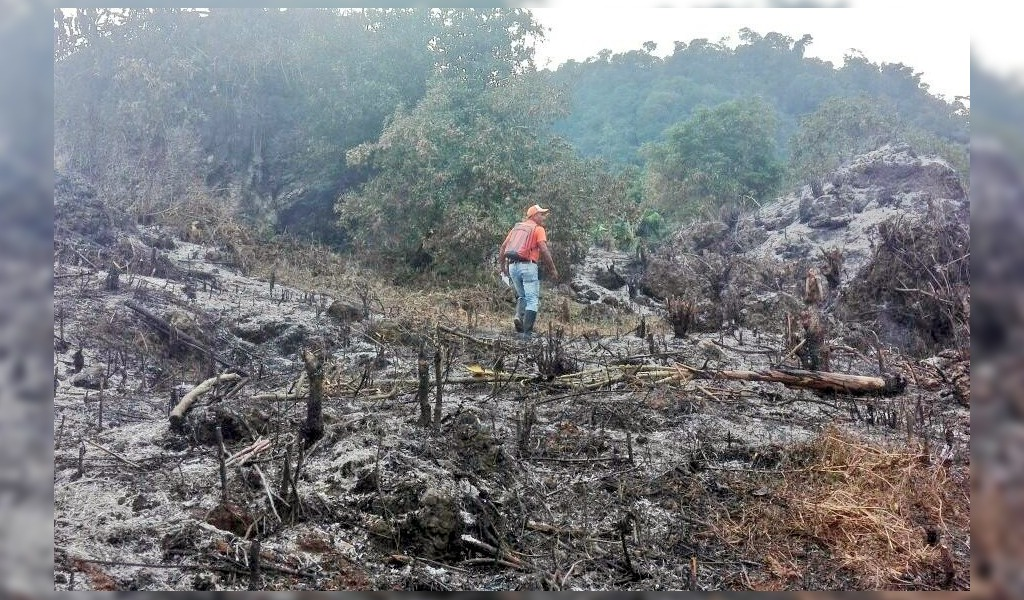 Avanza control de incendios forestales en Guaviare y Meta
