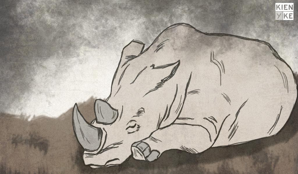 Falleció Sudán, el último rinoceronte blanco del mundo