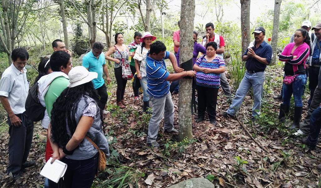 Formación biociudadana para habitantes rurales en Caldas