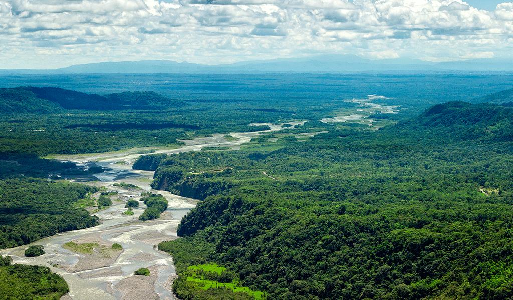 Cinco prioridades para salvar la Amazonía