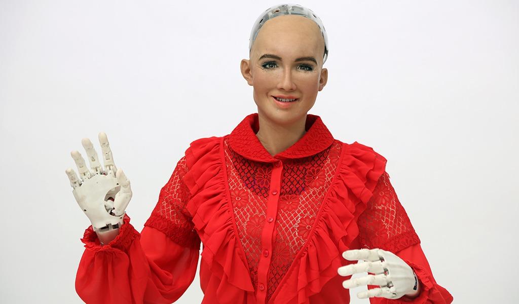 Una Escuela de Verano para aprender de robótica
