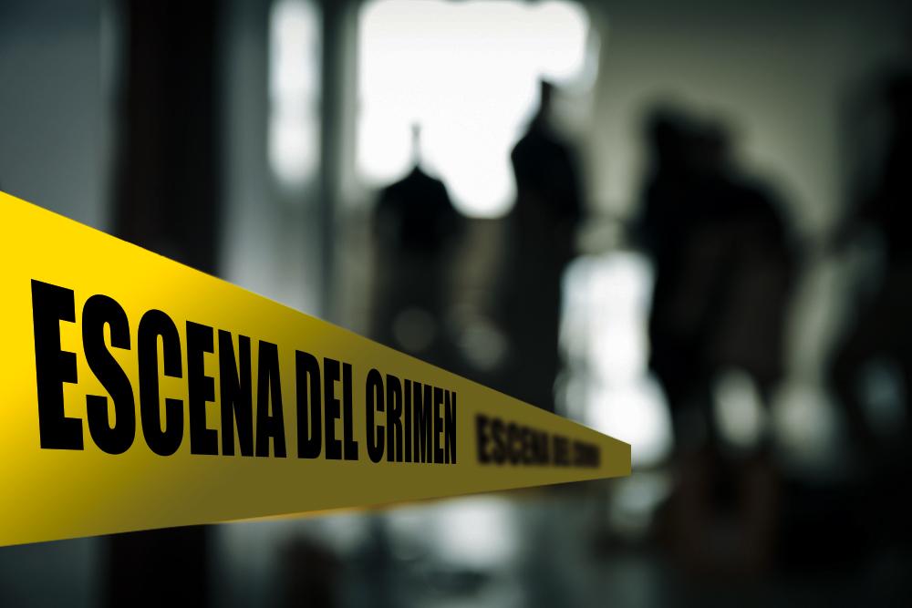 """Buscó """"cómo cometer el crimen perfecto"""" y mató a sus hijos"""