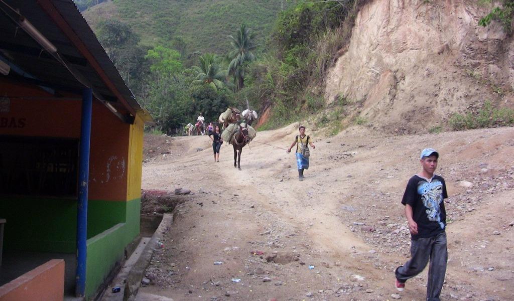 Combates provocan nuevo desplazamiento en el Catatumbo