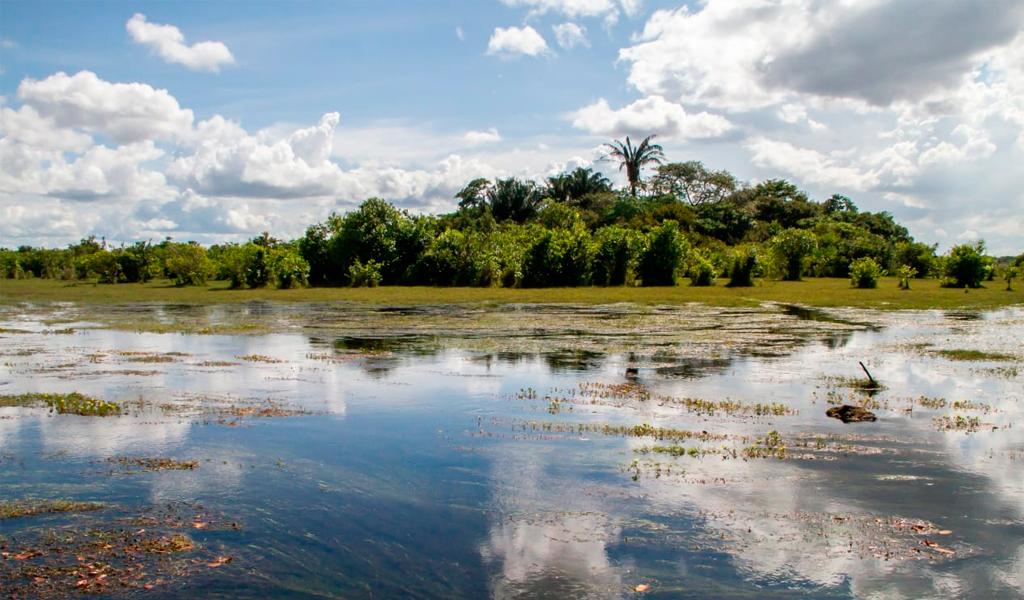 Cinaruco se convirtió en nueva área protegida de Colombia