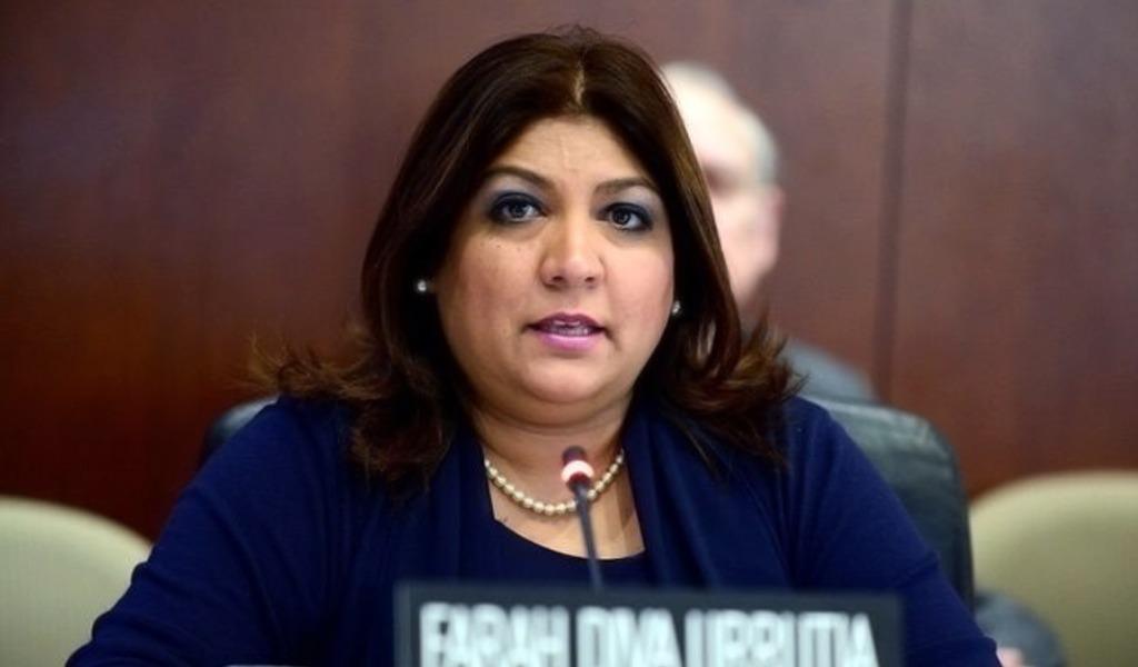Panameña liderará la Secretaría de Seguridad de la OEA