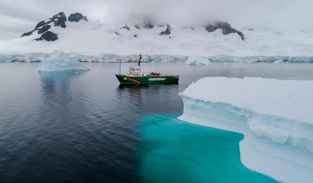 Industrias se comprometen a no pescar en la Antártida
