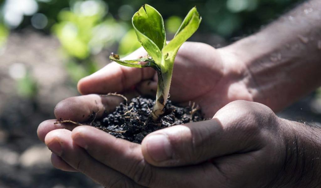Recursos de 2,3 billones de pesos para 'Crecimiento Verde'