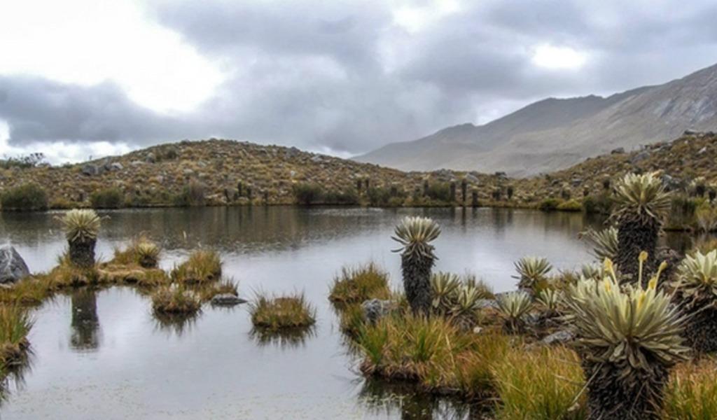 Medio ambiente, Colombia, Iván Duque, acuerdo