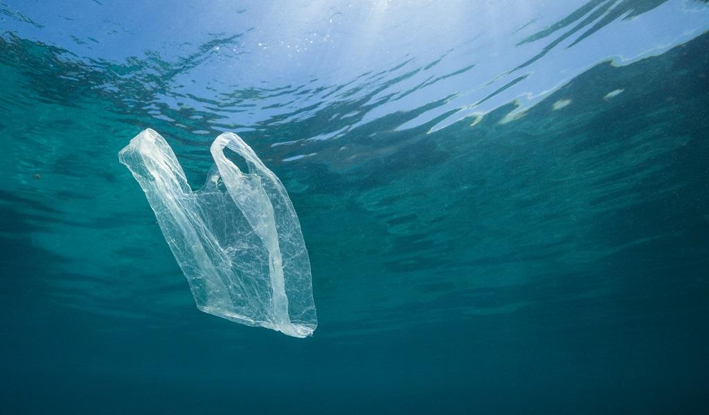 Crean bolsas que se disuelven en el agua