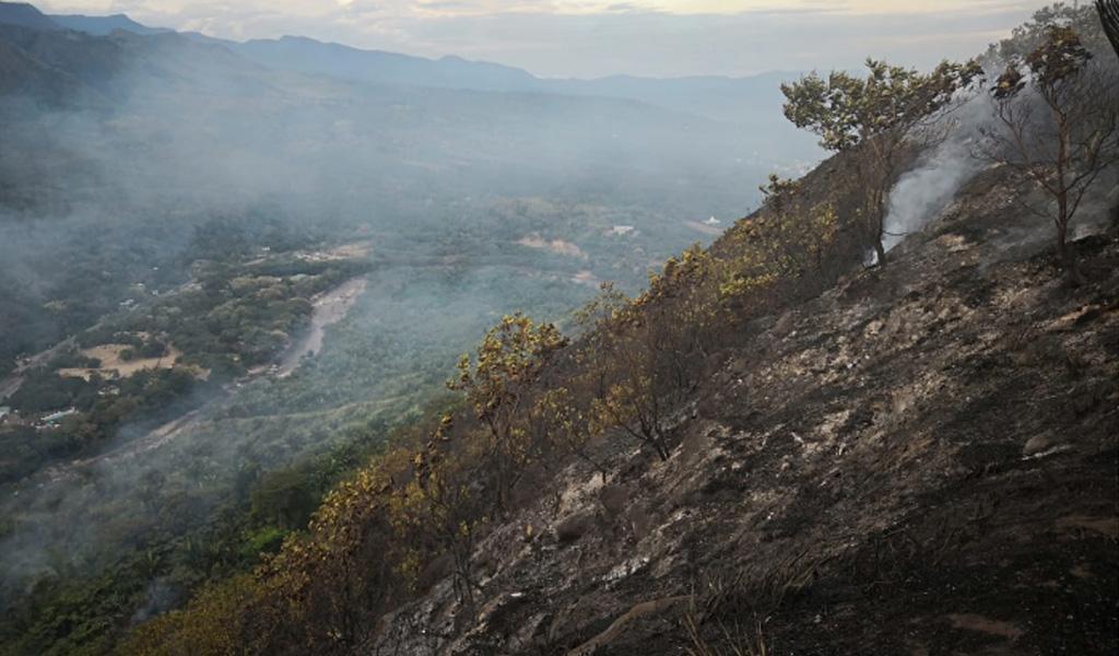 Controlan incendio forestal en Nilo, Cundinamarca