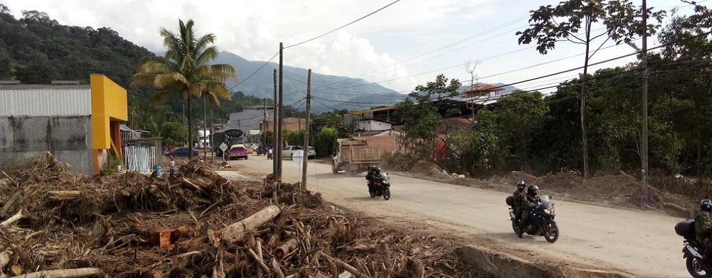 En peligro Reservas Forestales: Contraloría
