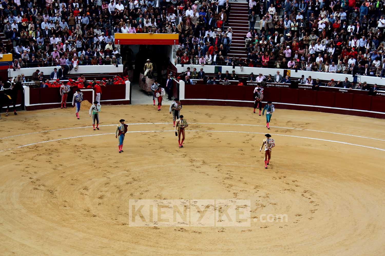 Reviven corridas de toros en Colombia