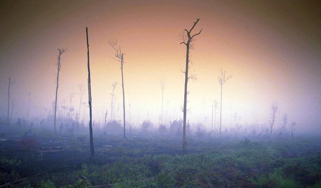 Fenómenos extremos, un síntoma del cambio climático