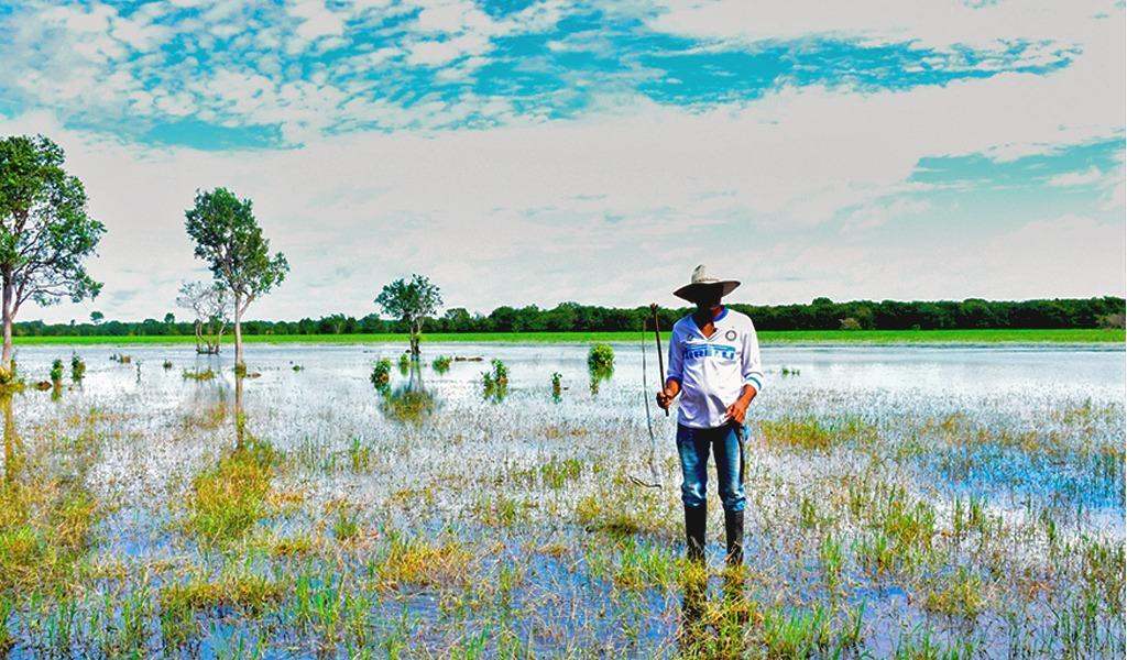 Cinaruco, nueva área protegida entre Colombia y Venezuela