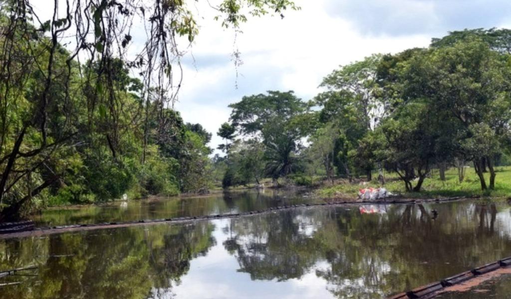 Ahora los colombianos podrán reportar desastres ambientales