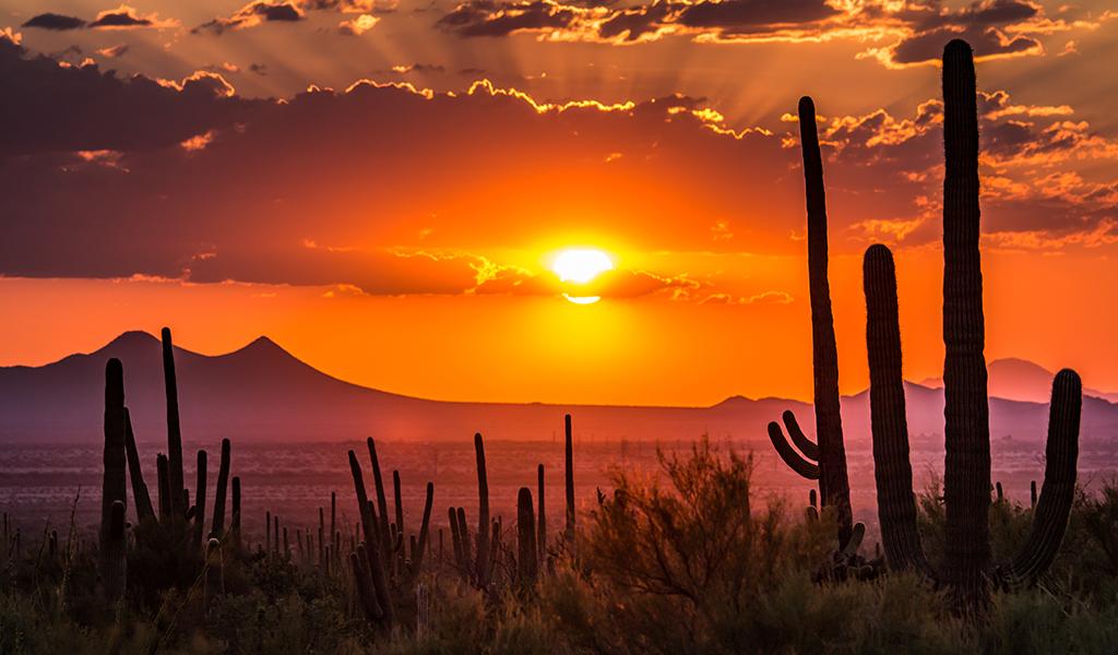 Arizona, el corazón desértico de Estados Unidos