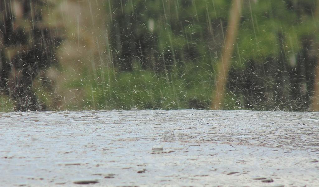 Siete muertos por lluvias en Taiwán