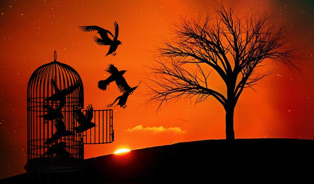 ¡La libertad y la responsabilidad deben ir de la mano!