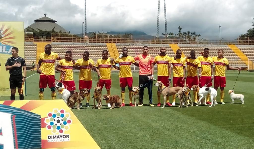 Equipo de fútbol apoya adopción de perros callejeros