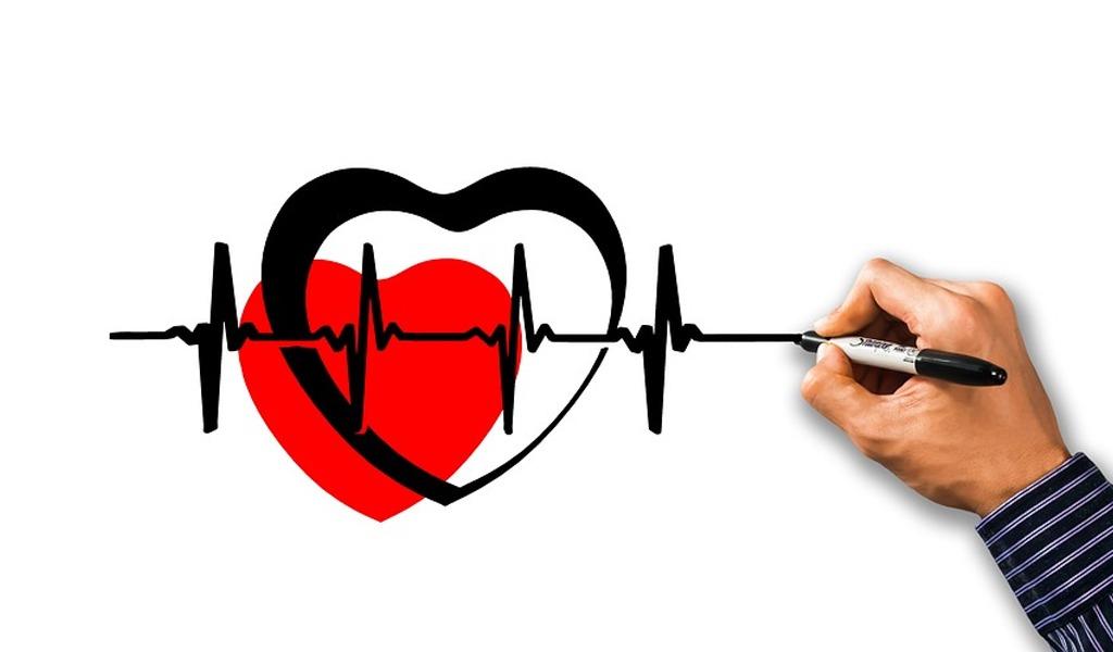 Algunos datos del corazón hoy en su día