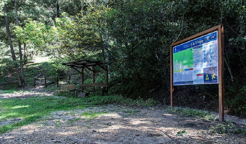 Registran especies nuevas de insectos en quebrada de Bogotá
