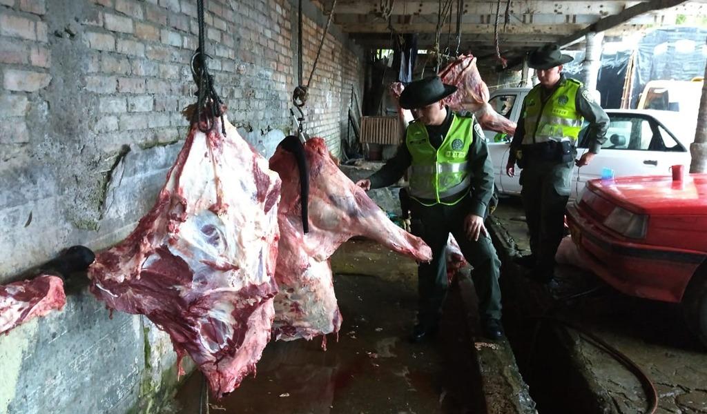Incautan 500 kilos de carne en matadero clandestino en Cauca
