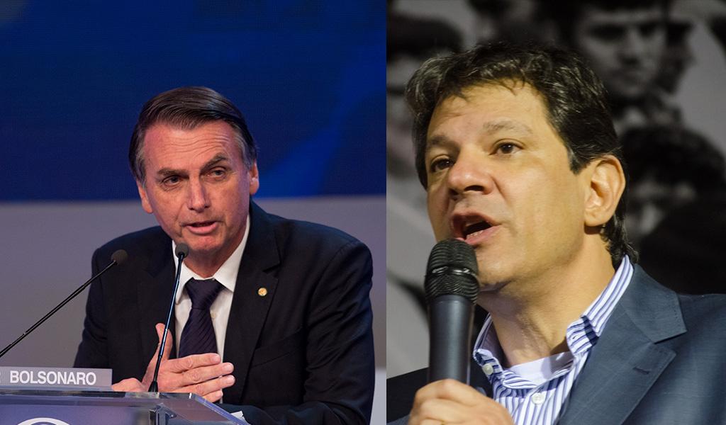 Brasil: Bolsonaro y Haddad aumentan ventaja en sondeos