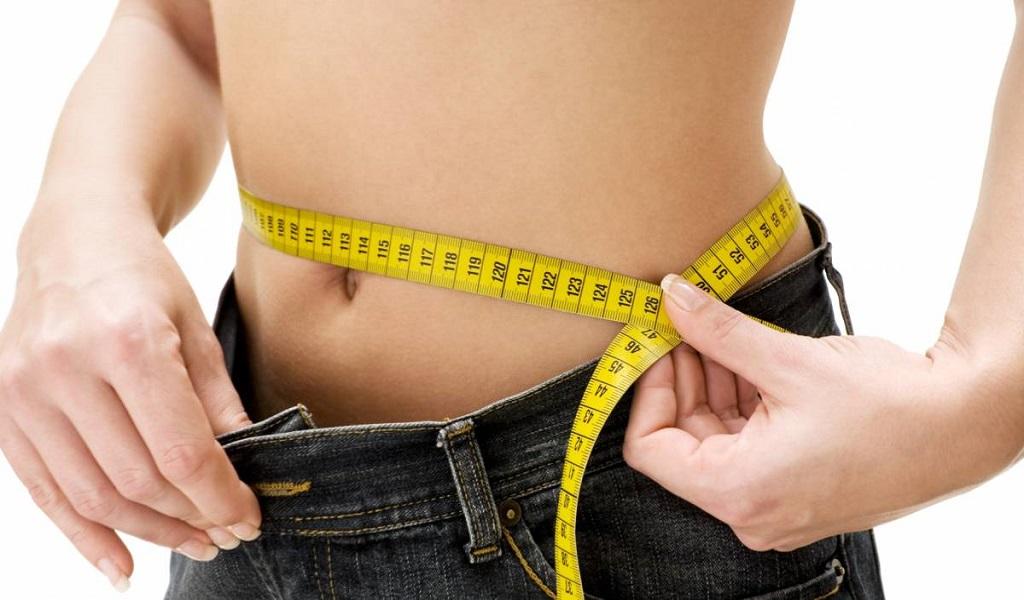 Descubren proteína que regularía el metabolismo