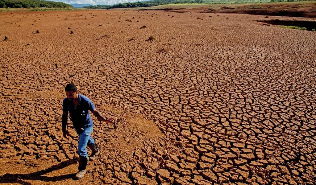 """Greenpeace: """"El G20 subestima al cambio climático"""""""