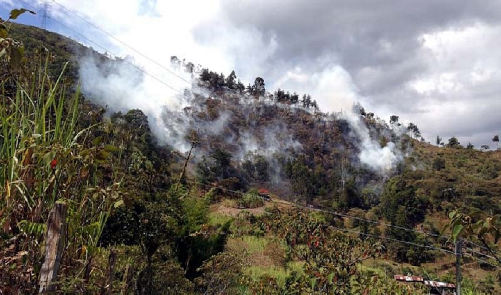 Ideam prende las alarmas por incedios forestales