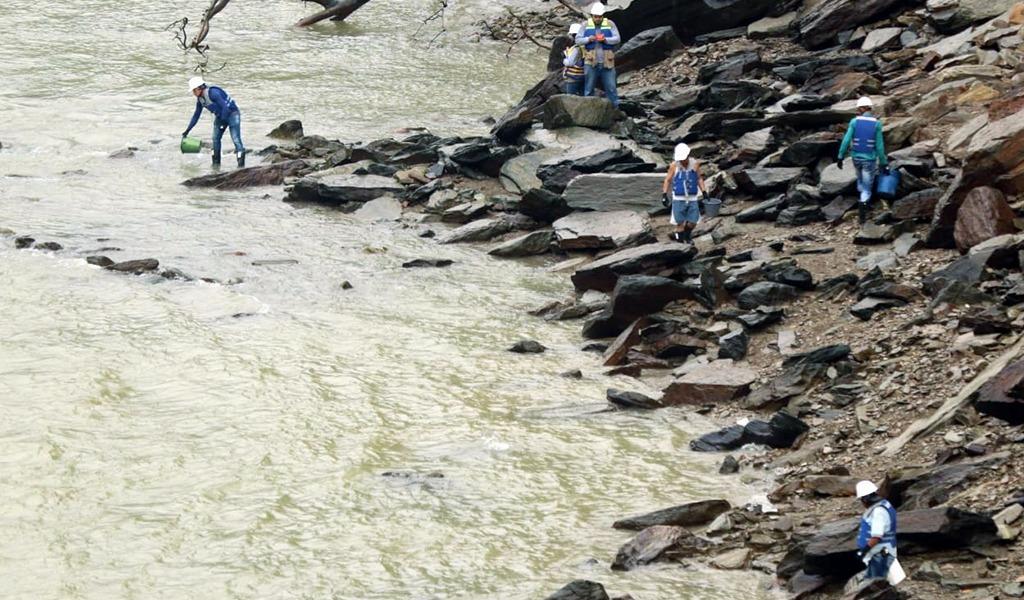 Ecosistemas del río Cauca, en riesgo