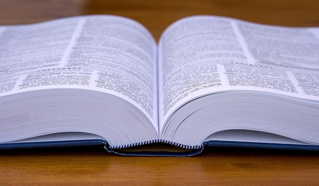 diccionario RAE hijueputa