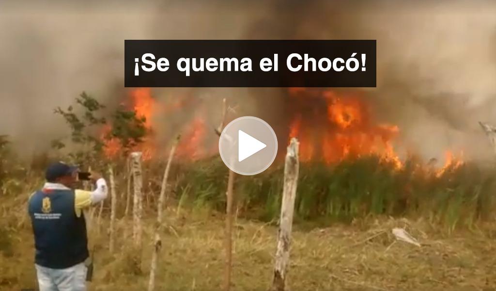 Alrededor de 900 hectáreas quemadas en reserva forestal