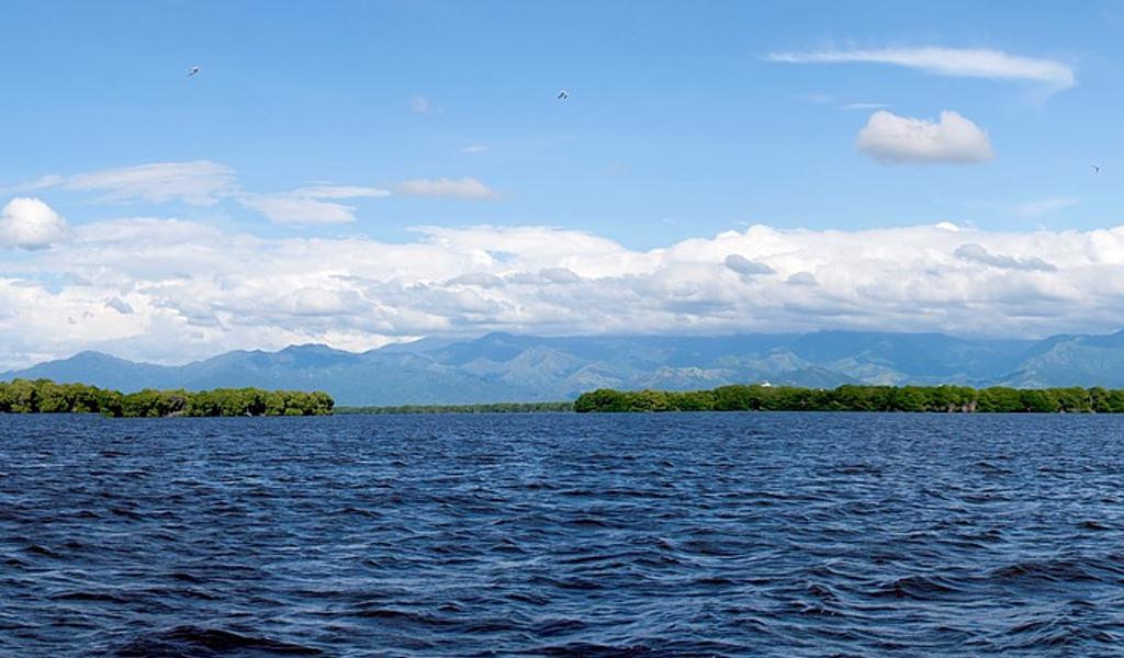 Lanzan plan para proteger Ciénaga Grande de Santa Marta