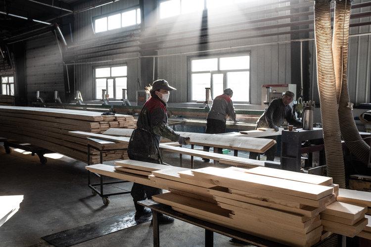 China figura como el gran devorador de la madera rusa