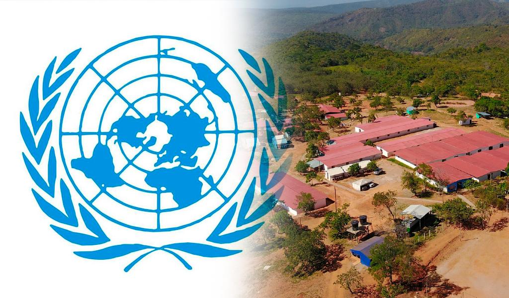 ONU y Gobierno inician nuevo plan de reincorporación