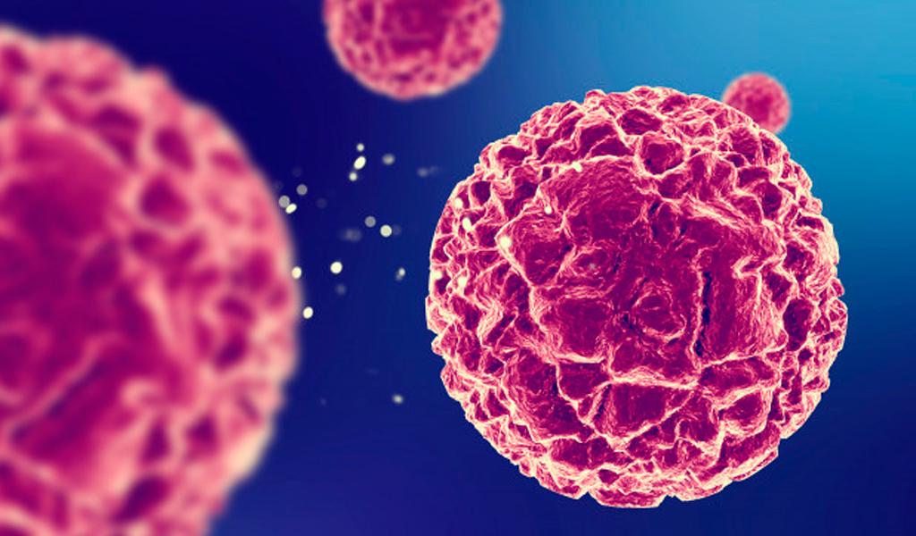 ¿Qué es la donación de células madre?