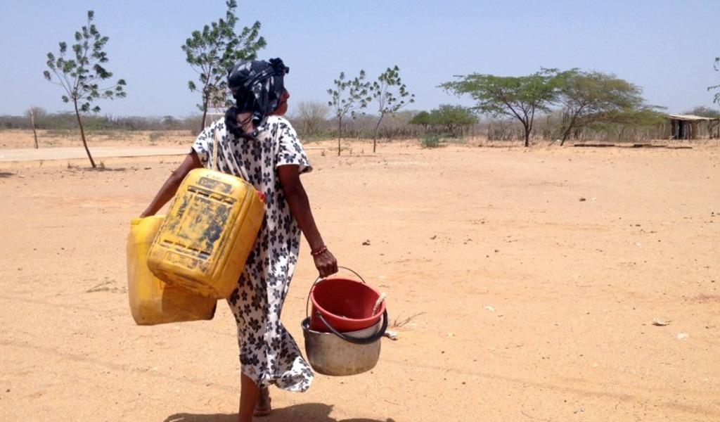 Por sequía declaran calamidad pública en La Guajira