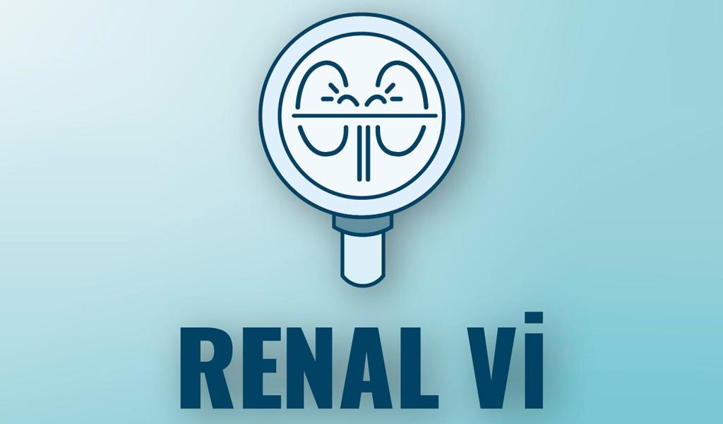 RenalVi: la aplicación en pro de la salud renal