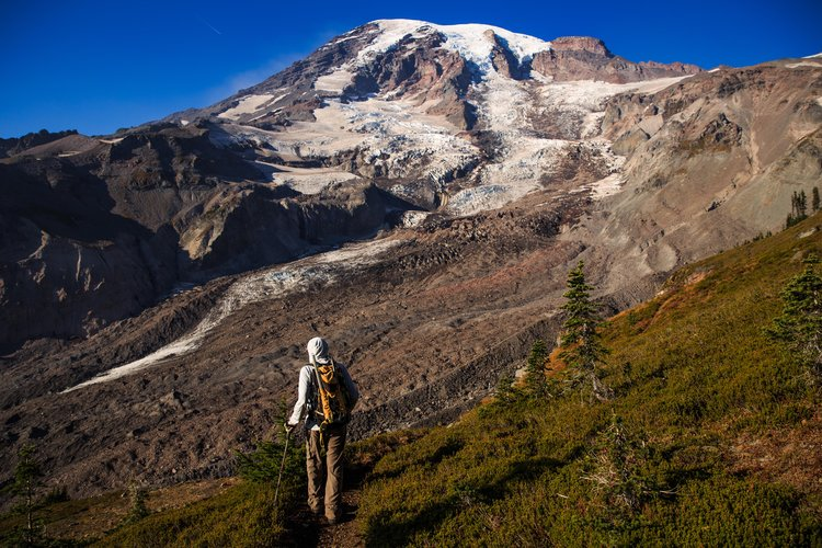 Deshielo de glaciales está alterando ecosistemas