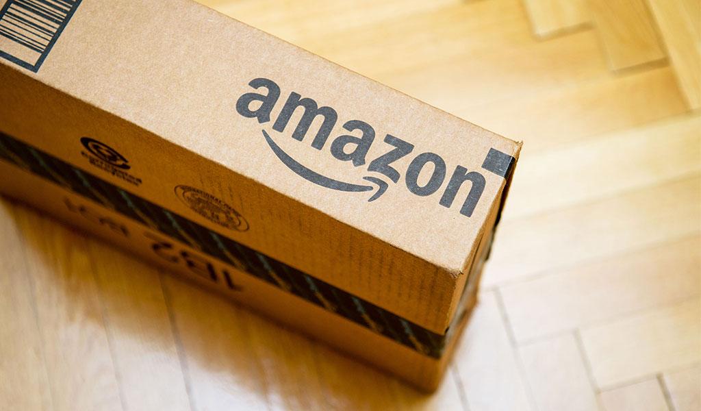 Países amazónicos pierden batalla contra Amazon
