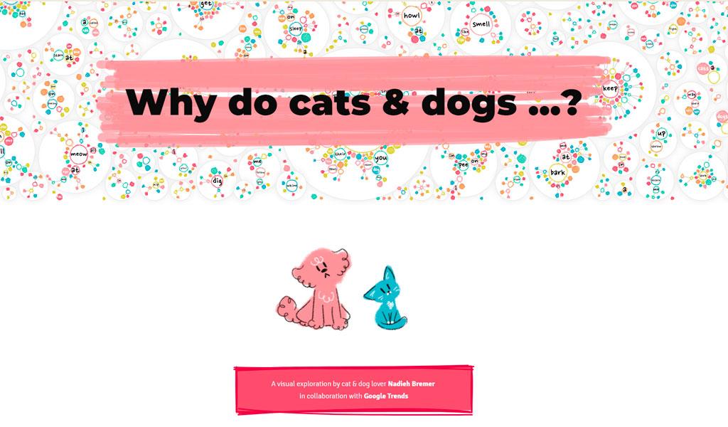 Crean página web para mascotas