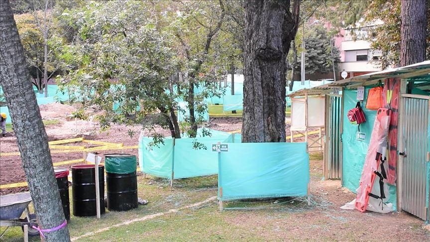 ¿En Bogotá no hay espacio para más árboles?