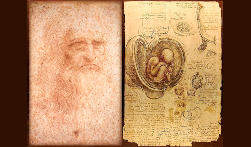 Da Vinci, el genio que dibujó las entrañas del humano