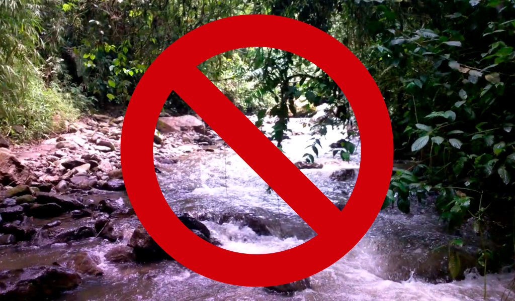 Tendencia ecológica: Uso de detergentes biodegradables