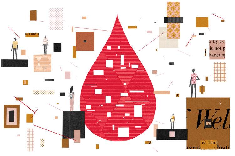 Clasificar la sangre por etnia y raza no es discriminar