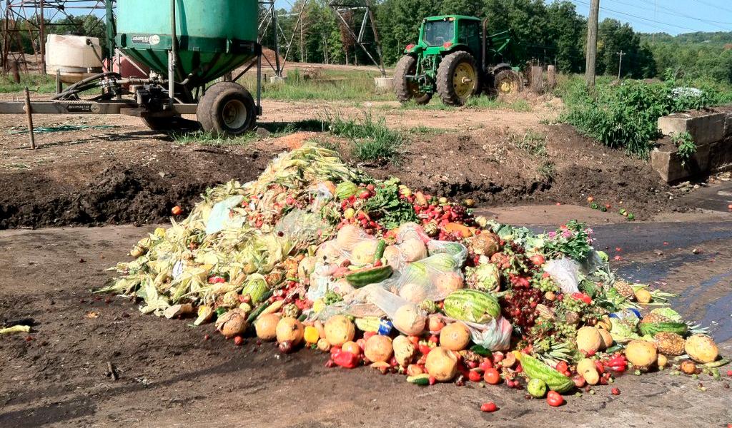 Aprobada ley para prevenir desperdicio de alimentos