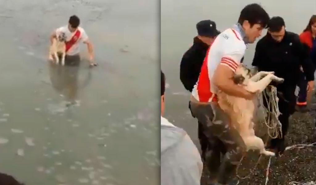 Hombre rescata a perro en un lago congelado
